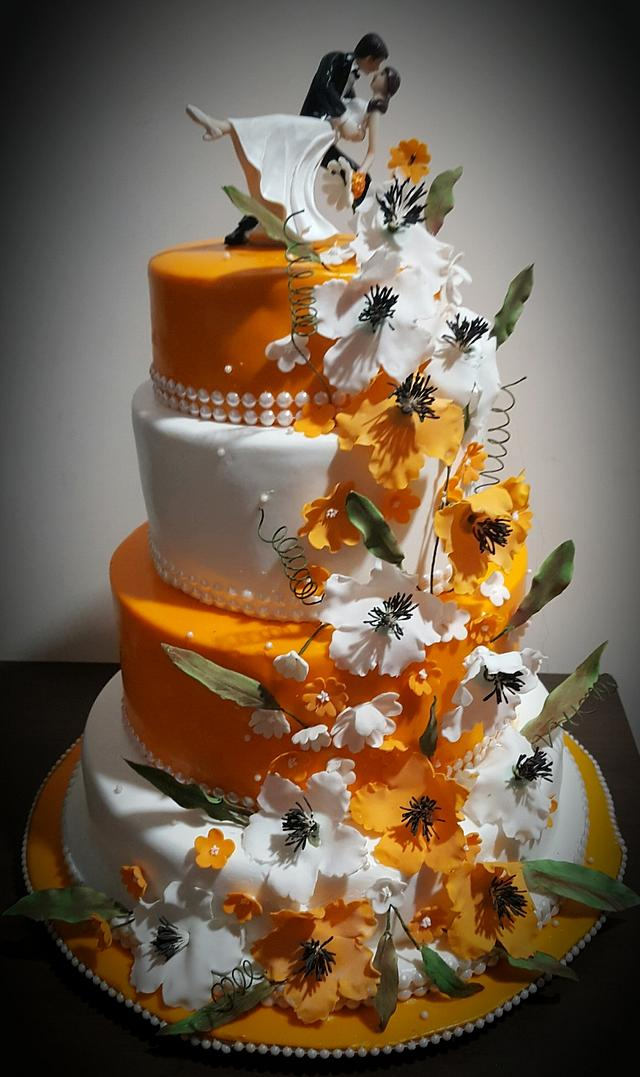 Orange and white delight