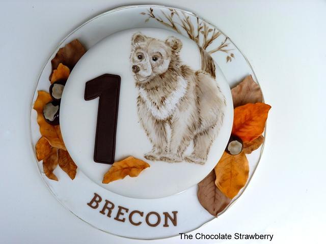 Little Bear's 1st Birthday