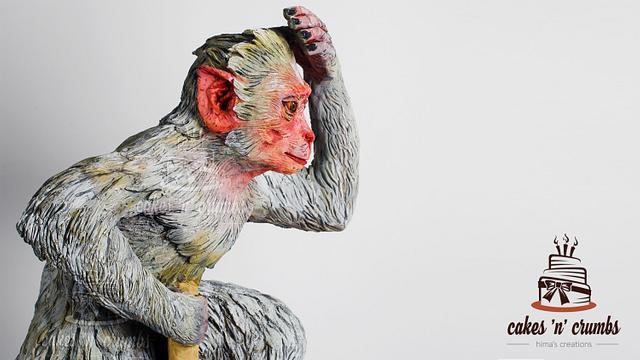 Rhesus Monkey ..