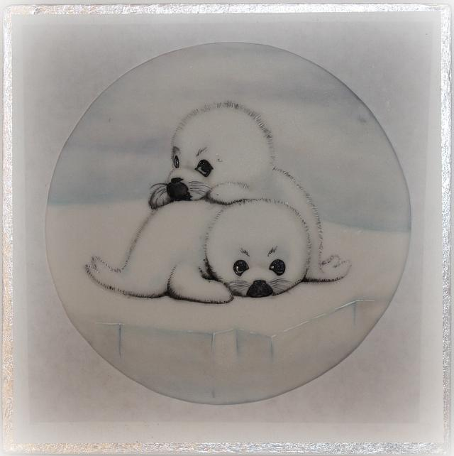 ANIMALS RIGHTS _Collaboration (Seal pup)