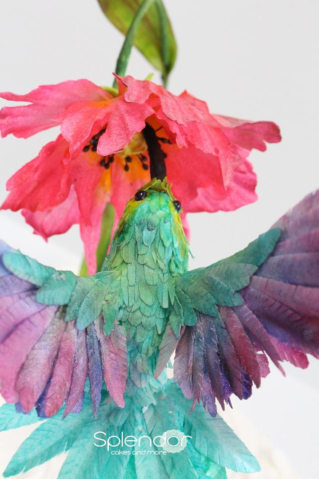 Wings-A thing of beauty and colour in wafer