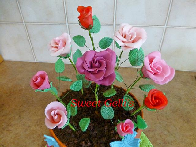 Potted Roses Cake
