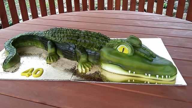 3D Aligator cake