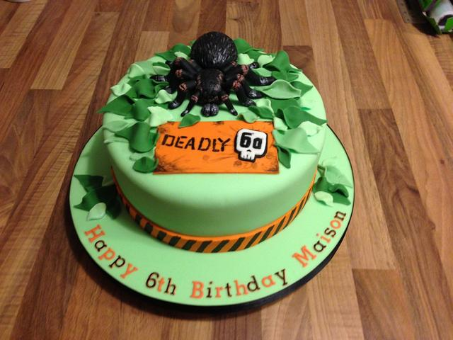 Tarantula deadly 60 cake