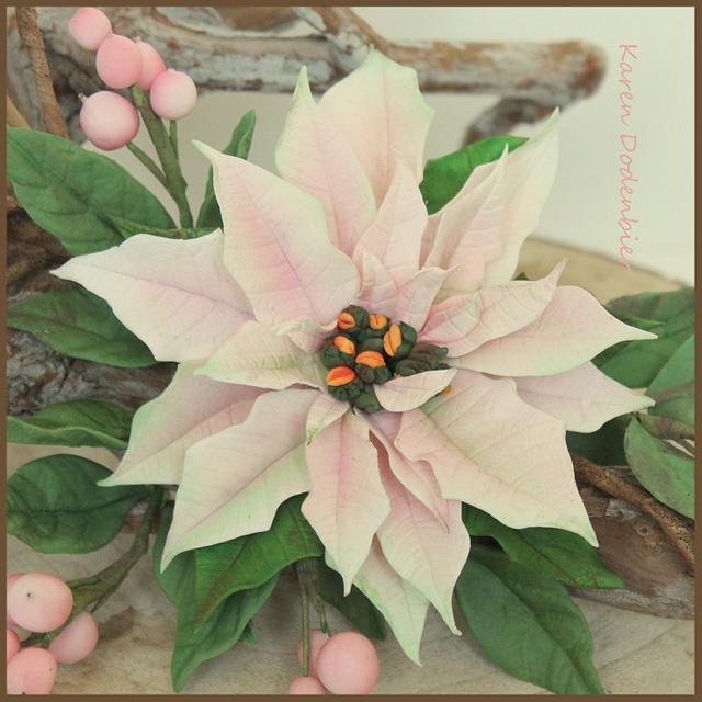 Light pink Pointsettia