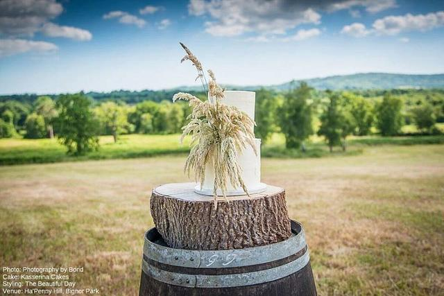 Buttercream cake with grasses