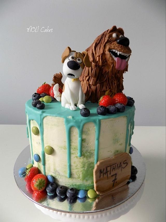 Secret life of pets - drip cake