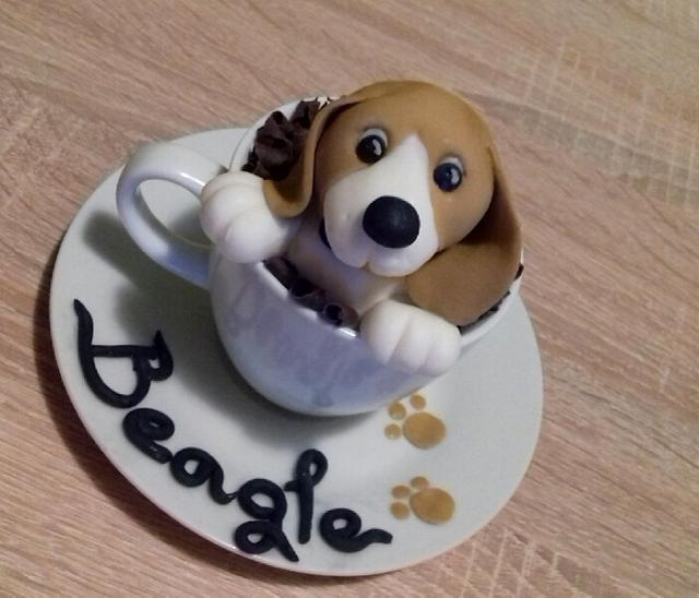 My sweet beagle love