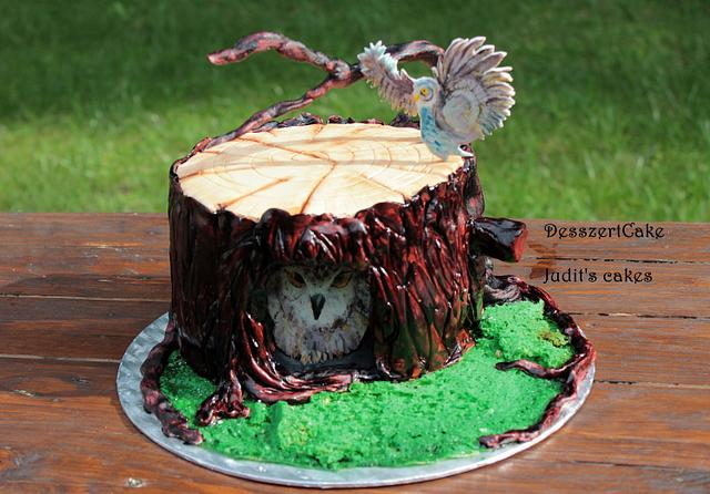 Hand painted Owl cake