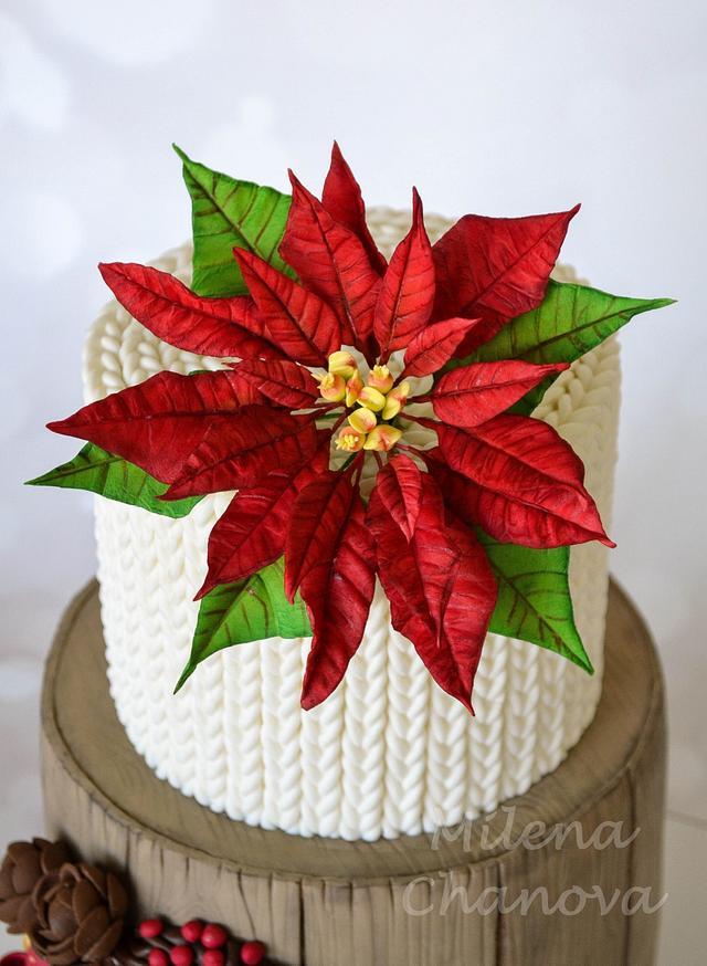Winter Poinsettia Cake