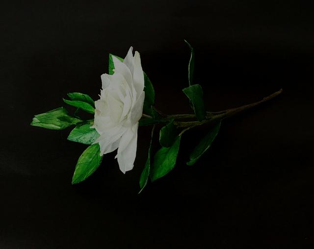 Wafer paper Gardenia