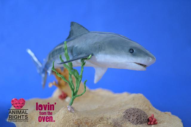 Animal Rights Cake Collaboration - Tiger Shark