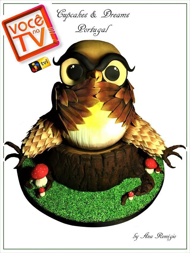 TV OWL