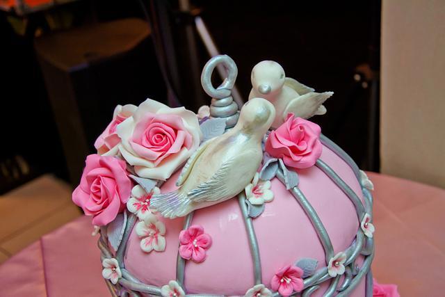 Wedding birdcage cake