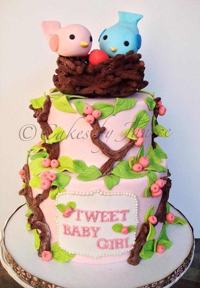 Bird themed baby shower cake