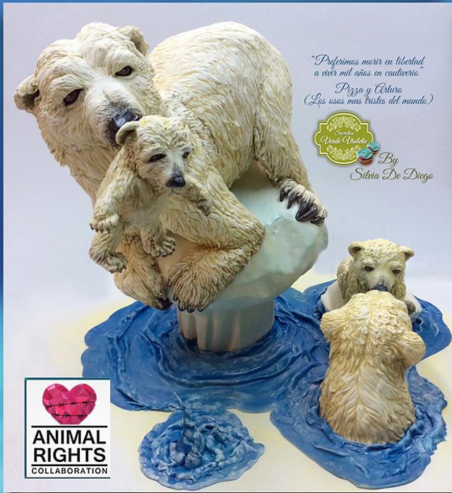 polar Bear  colaboración animal Rigths