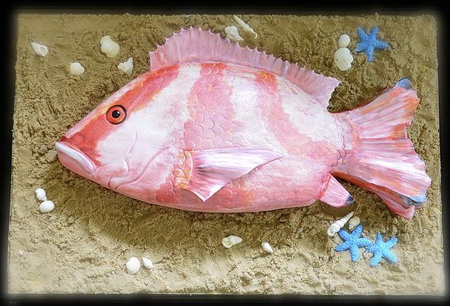Red Emperor Fish Cake