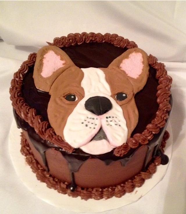 2D French bulldog