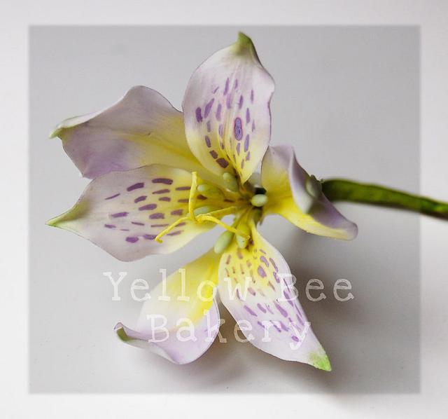Sugarcraft Lily