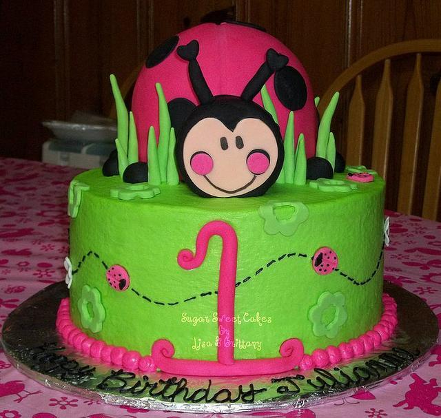 Hot Pink Lady Bug ~ 1st Birthday