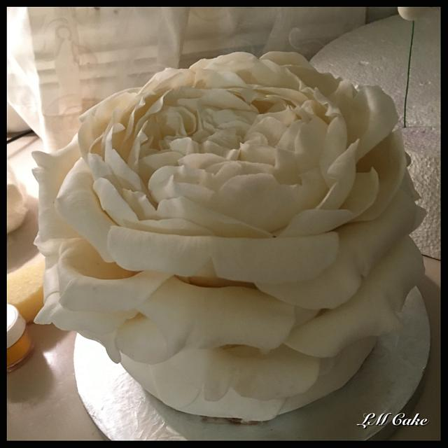 An English Rose Cake! YES it's a CAKE!!!!