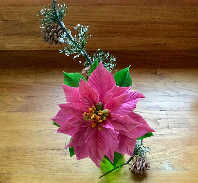 Pink poinsettia and pine cones