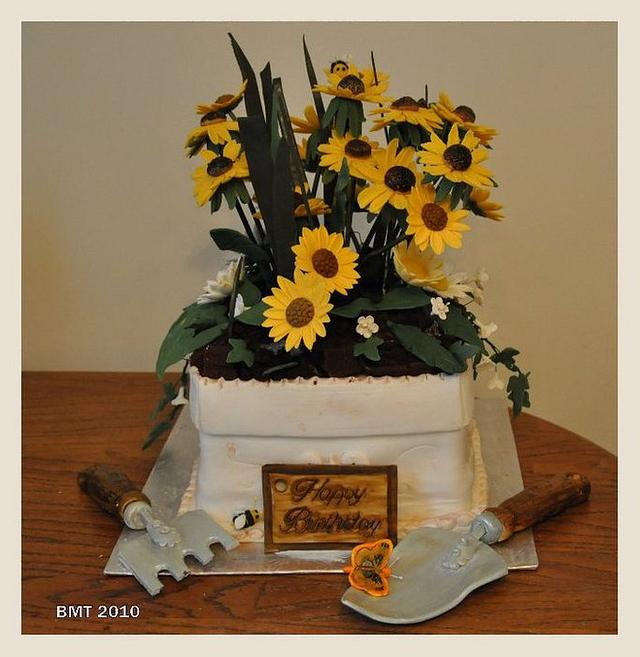 Black Eyed Susan Flower Pot Cake
