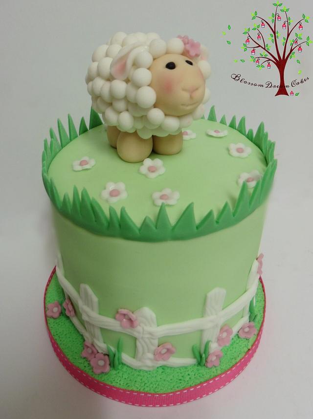 Baaaa little lamb