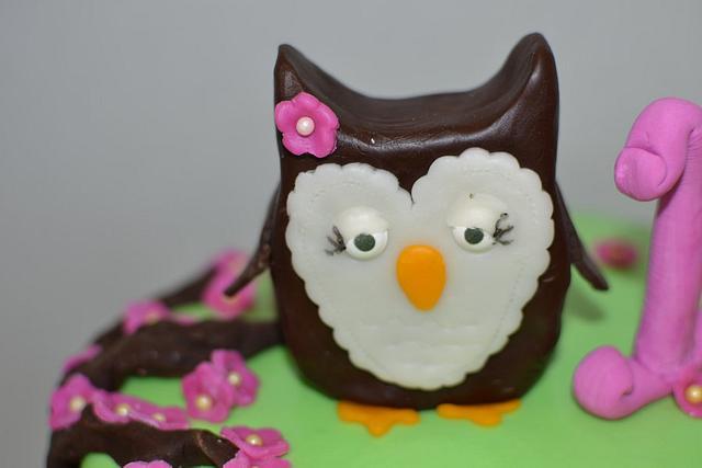 Owl 1st Birthday Cake + Smash Cake!