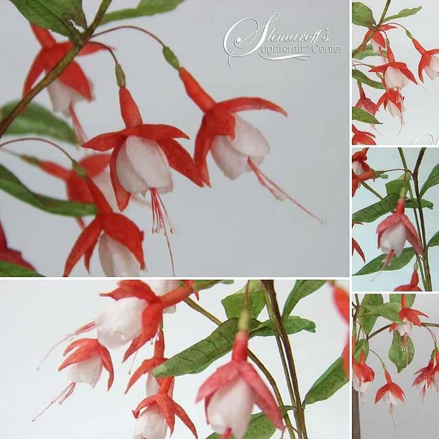 Wafer Paper Fuchsia