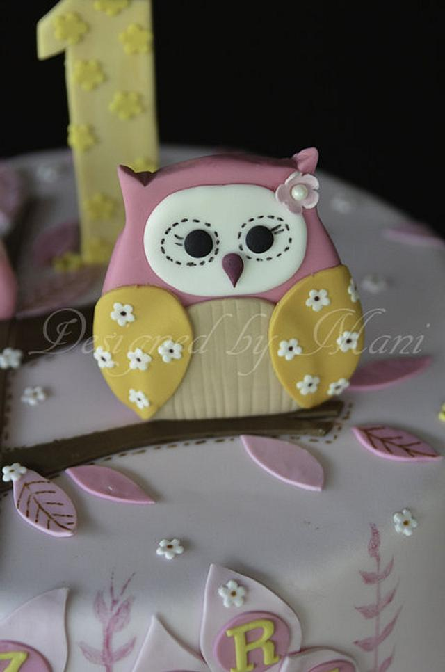 owls 1st birthday