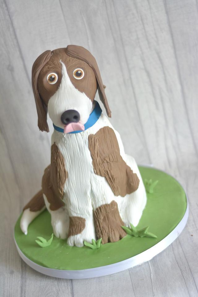 Springer Spanial Cake