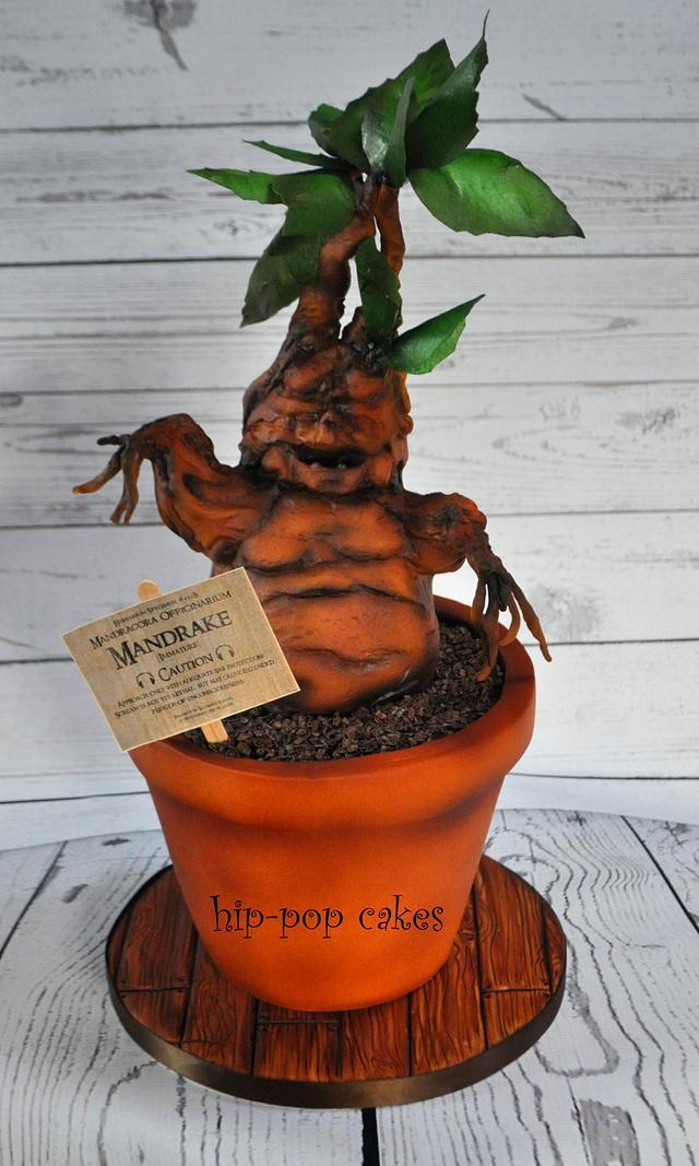 Mandrake Harry Potter Cake By Lesley Marshall Cake Cakesdecor