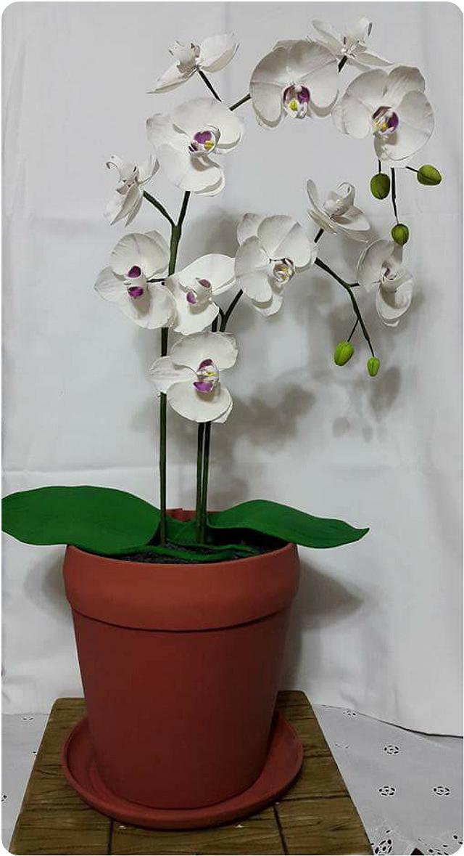 Maceta con orquideas