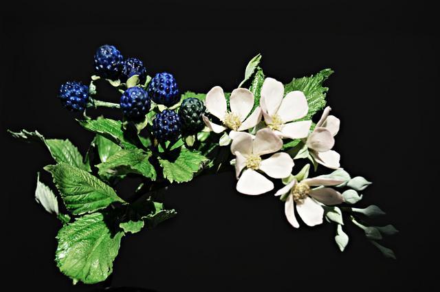 Summer mood-  freeformed blackberries
