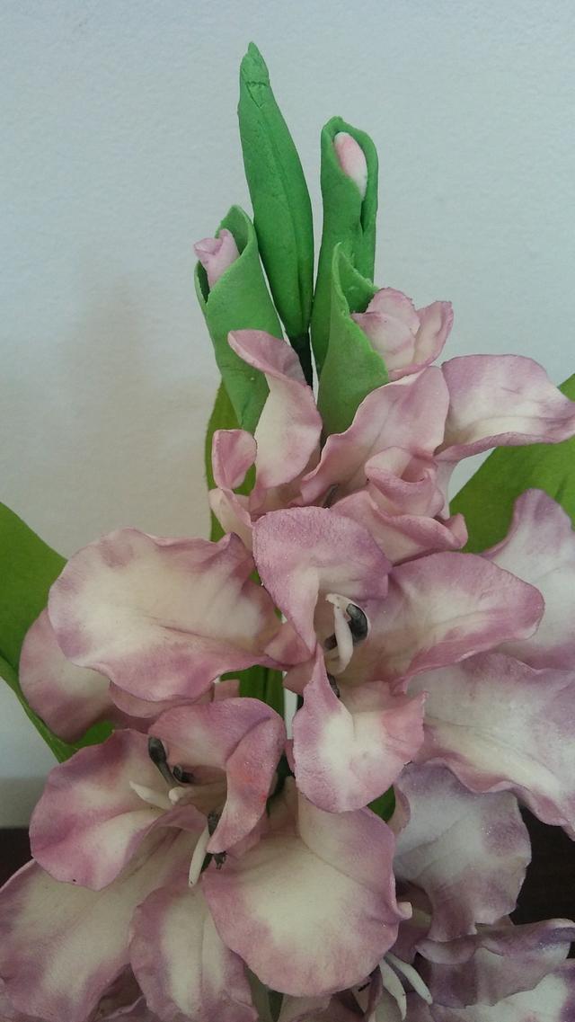 Fiore gladiolo