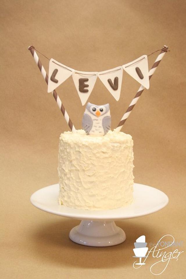 Snowy Owl Smash Cake
