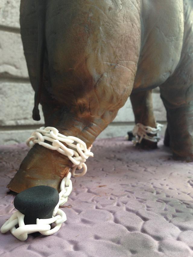 Seeta the Asian Elephant and Baby Renu
