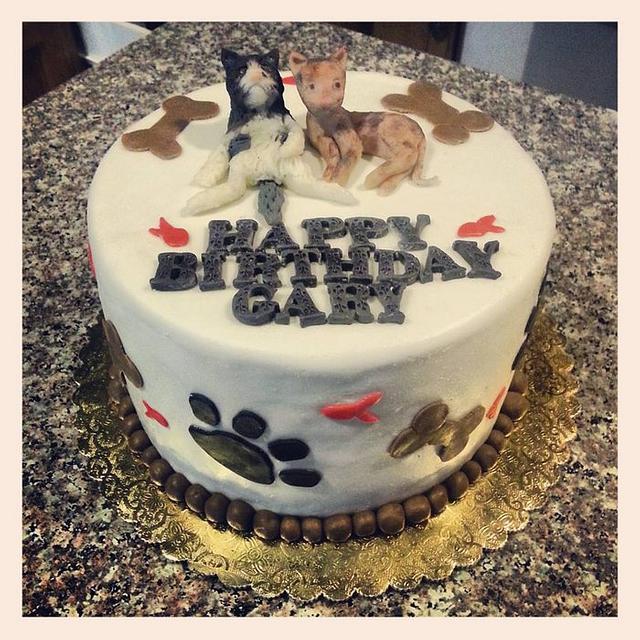 Vet tech kitties cake