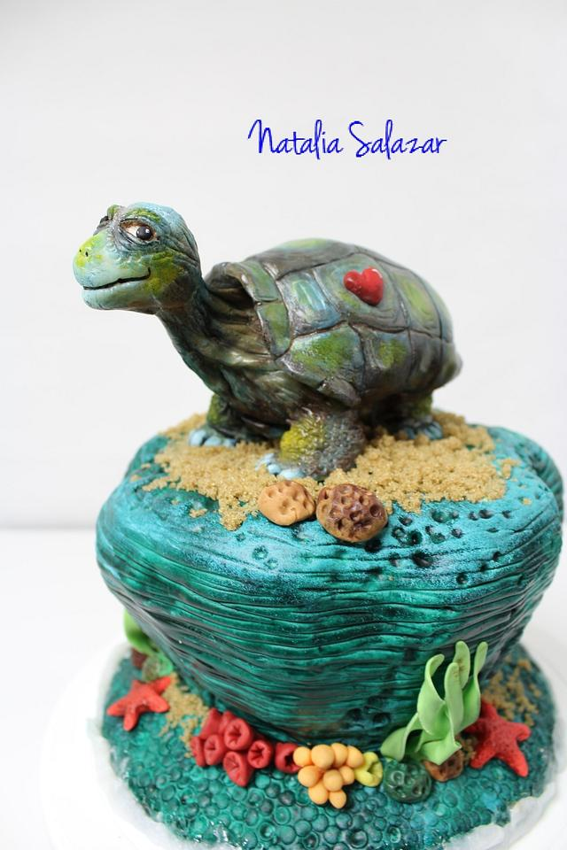 """""""George"""" The Galapagos tortoise for Animal Rights collaboration."""