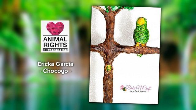 Chocoyo- Animals Right Collaboration