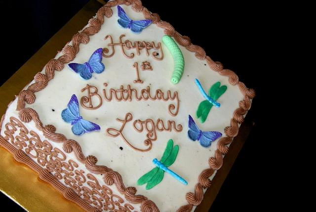 Caterpillar dragonfly cake