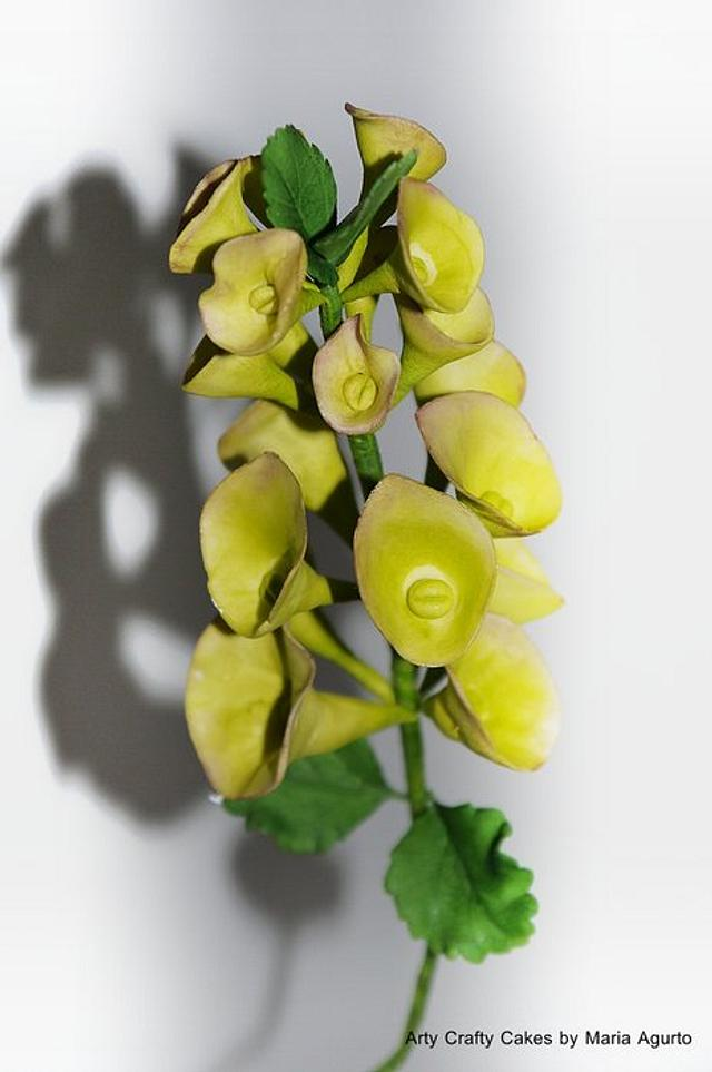 Bells of Ireland sugar flower