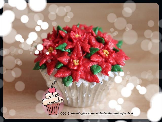 Mini Poinsettias