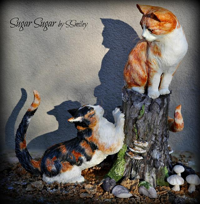 Siblings - Animal Rights Collaboration
