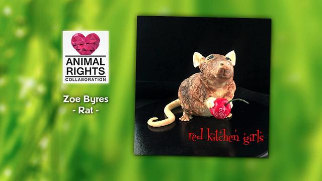 Rat - Animal Rights Collaboration