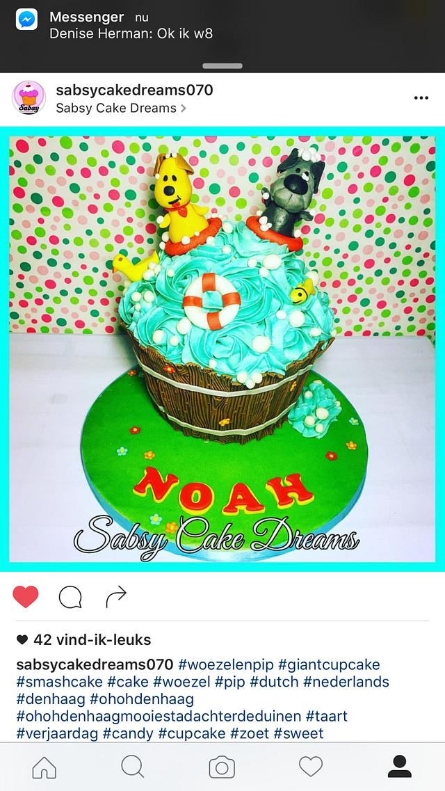 Woezel and PiP smash cake