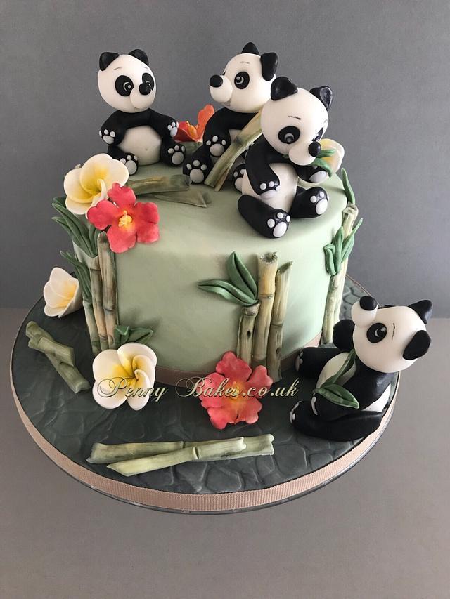 The Panda Bamboo Feast!