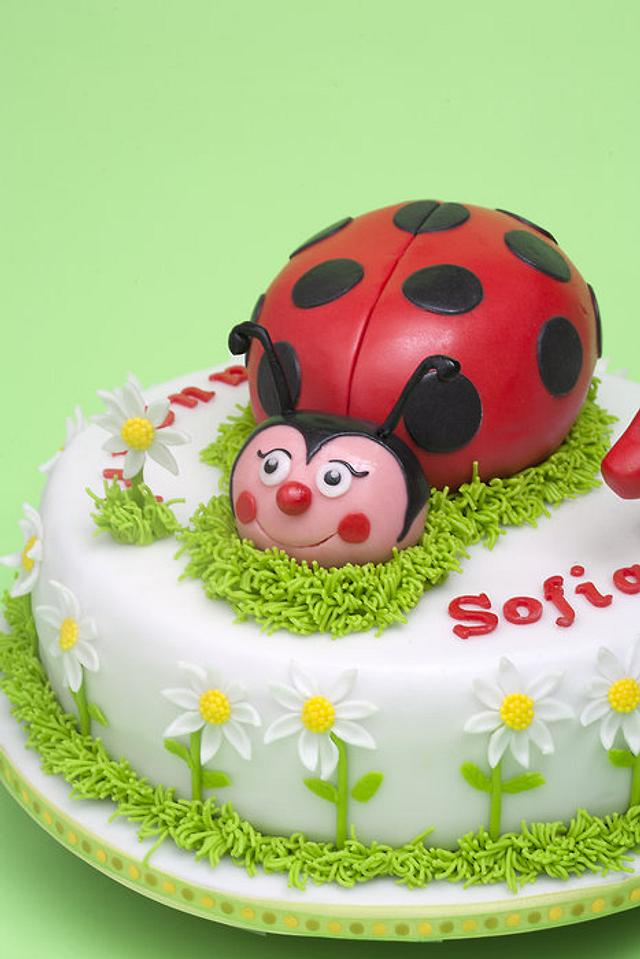 lady bird cake