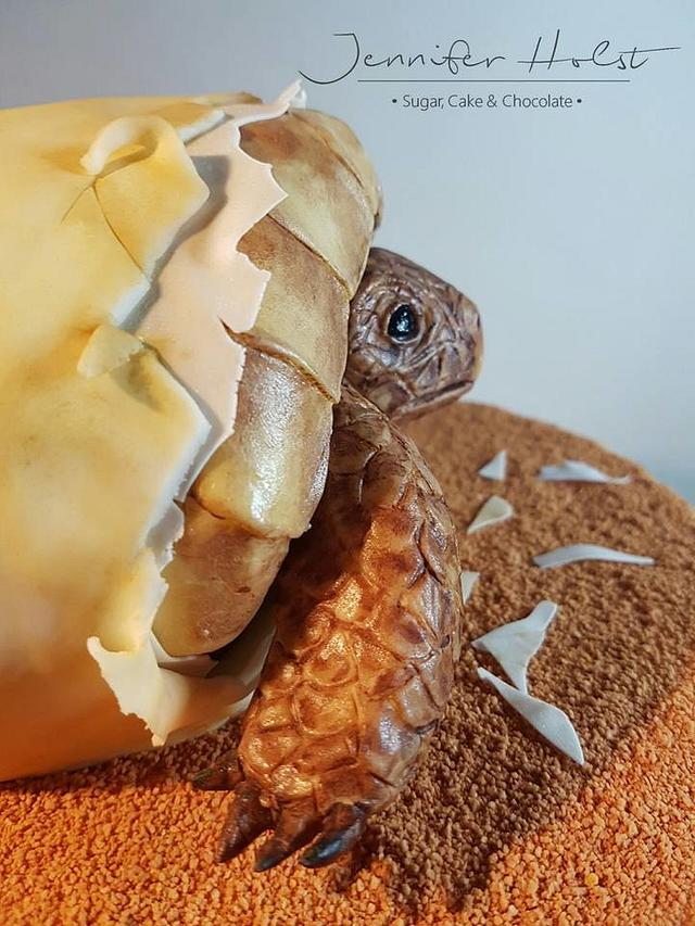 Hatching turtle for carving class